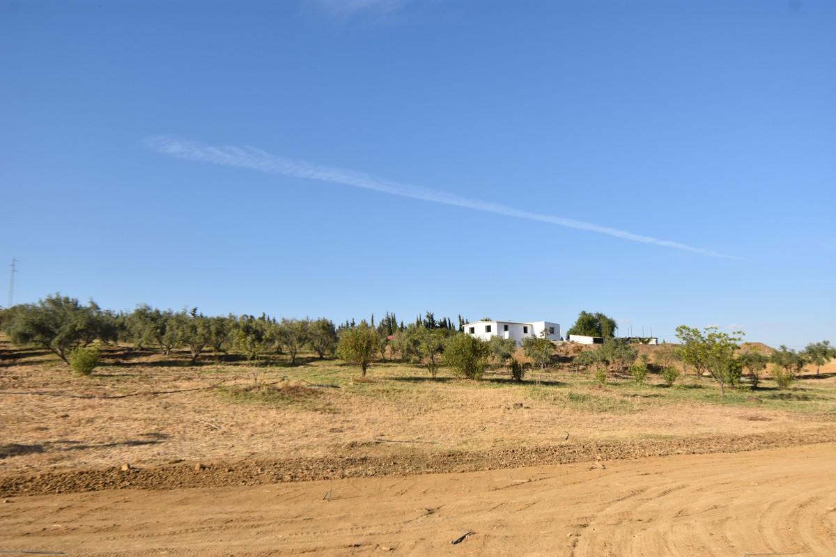 Villa - Finca in Cártama